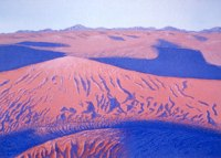 Desert Shadows -- artwork © Shelley Martin (click to see a larger version of the painting)