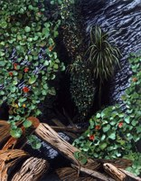 Nasturtium Cove -- artwork © Shelley Martin (click to see a larger version of the painting)